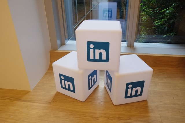 Linkedin; Social Media Platform [Business] [Job Profile Account]